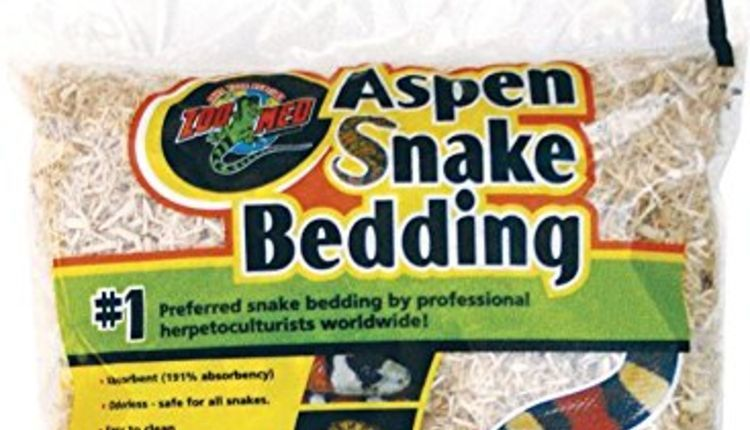 best bedding for corn snakes