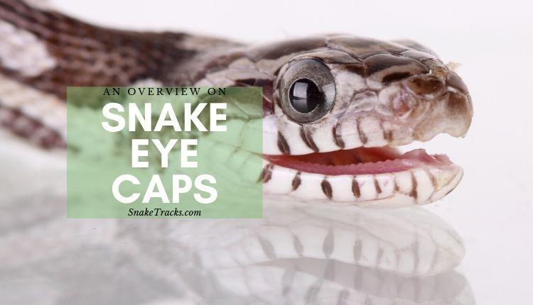 Snake Eye Caps